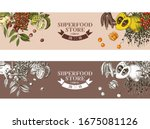 hand drawnstore banners with... | Shutterstock .eps vector #1675081126
