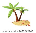 Palm Trees With Coconuts On The ...