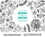 herbs and spices hand drawn... | Shutterstock .eps vector #1675393159