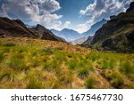 Green And Yellow Valley In The...