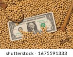 one dollar and soy beans... | Shutterstock . vector #1675591333