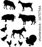farm animals silhouettes | Shutterstock . vector #16757566