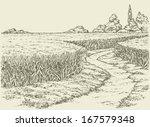 vector summer landscape. a dirt ... | Shutterstock .eps vector #167579348