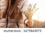 Woman Holding In Hand Bunch Of...