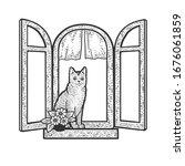 Cat Is Sitting On Windowsill...