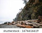 Driftwood Near The Cliffs On...