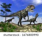 Three Allosaurus Dinosaurs...