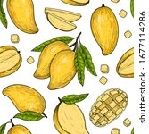 vector mango  hand drawn sketch.... | Shutterstock .eps vector #1677114286