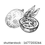 passion fruit with half and... | Shutterstock .eps vector #1677203266
