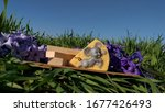 Small photo of spring lilac flowers on a green meadow and a figurine of sire with a mouse