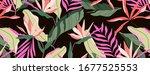 Dark Tropical Pattern. Brown...
