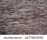 close up detail of wood texture ... | Shutterstock . vector #1677892450