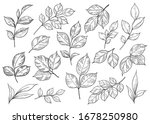 hand drawn set of different... | Shutterstock .eps vector #1678250980