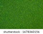 Green Grass Background ...