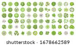 trees top view. different... | Shutterstock .eps vector #1678662589
