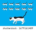 animal animation sequence cat...   Shutterstock .eps vector #1679161489