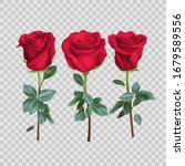 realistic rose design isolated... | Shutterstock .eps vector #1679589556