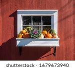 White Planter Box With Autumn...