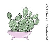 colored vector cacti in pink... | Shutterstock .eps vector #1679811736