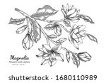 magnolia flower and leaf... | Shutterstock .eps vector #1680110989