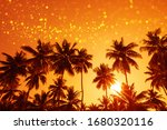 Coconut Palm Trees At Sunset...