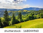 valley near forest on a steep mountain slope after the rain - stock photo