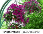 Beautiful Garden Decor And...