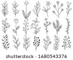 collection forest fern...   Shutterstock .eps vector #1680543376