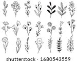 collection forest fern...   Shutterstock .eps vector #1680543559