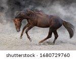 Red Stallion With Long Mane Ru...