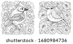 Adult Coloring Pages. Two Birds ...