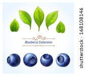 blueberry set  leaves and... | Shutterstock .eps vector #168108146