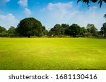 Green Lawn And Blue Sky In The...