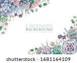 greenery  succulent and... | Shutterstock .eps vector #1681164109