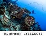 Scuba Diver Posing In The Back...