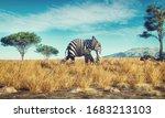 Elephant With A Zebra Skin...