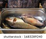 For Fishermen.fresh Caught...