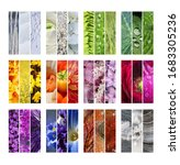 Small photo of Contemporary Collection of photos in a triptych Frame as a modern Collage of the seasonal Colors in nature