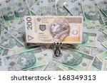 the concept of polish money | Shutterstock . vector #168349313