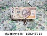 the concept of polish money   Shutterstock . vector #168349313