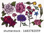 spring flowers hand drawn... | Shutterstock .eps vector #1683782059