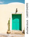 Colorful  Turquoise Double Door ...