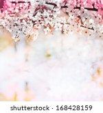 spring flowering branches ...   Shutterstock . vector #168428159