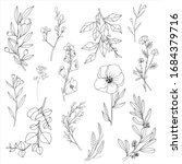 flower and leaf hand draw... | Shutterstock .eps vector #1684379716