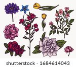 spring flowers hand drawn... | Shutterstock .eps vector #1684614043