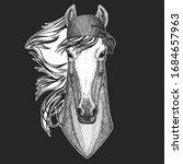horse  steed  courser. bandana. ... | Shutterstock .eps vector #1684657963