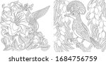 coloring pages. tropical birds... | Shutterstock .eps vector #1684756759