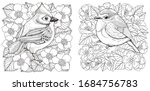 adult coloring book. two... | Shutterstock .eps vector #1684756783