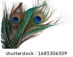 Peacock Feather In Royal Style...