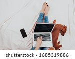Small photo of Girl Works at the Computer at Quarantine at Home. Self isolation. Legs and Laptop close-up, Dog lying next to the hostess on the couch